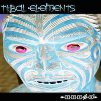 Tribal Elements product image